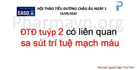 dtd-tuyp-2-sa-sut-tri-tue