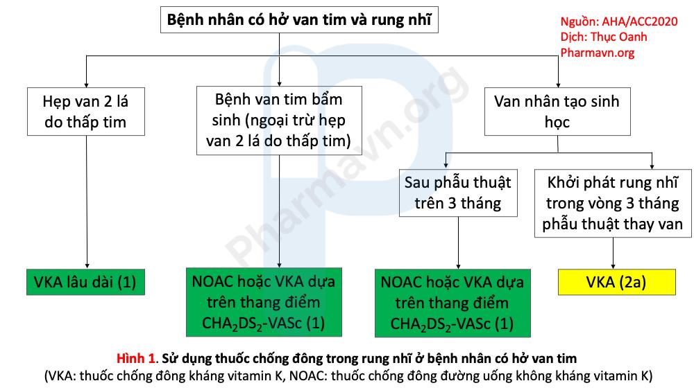 huong-dan-quan-ly-chan-doan-va-dieu-tri-benh-van-tim-aha-acc-2020